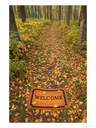 542680_Welcome_Mat_on_Forest_Trail.jpg